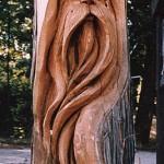 Drožinėtas seno žmogaus veidas medyje